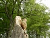 Woodpecker Carving