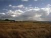 Ludworth Moor looking towards Kinder Scout